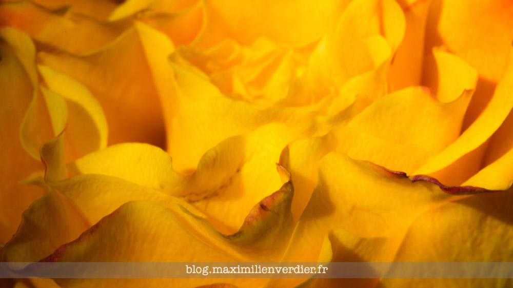 blog-maximilienverdier-fr-20161128-002