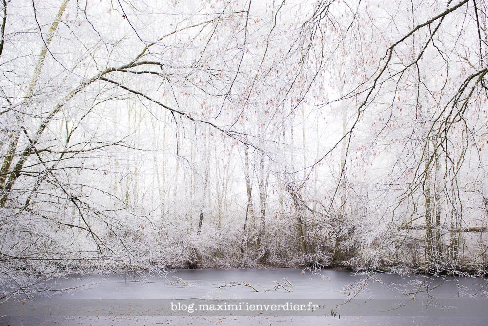 blog-maximilienverdier-fr-20170101-006